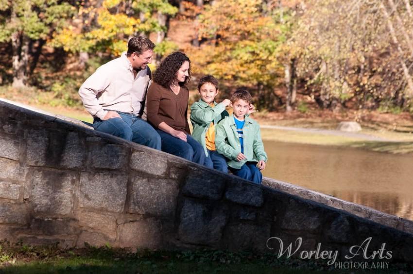 silly boys family bridge